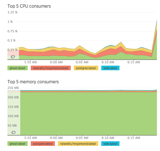 Docker image resource usage graph with new Relic nrsysmond