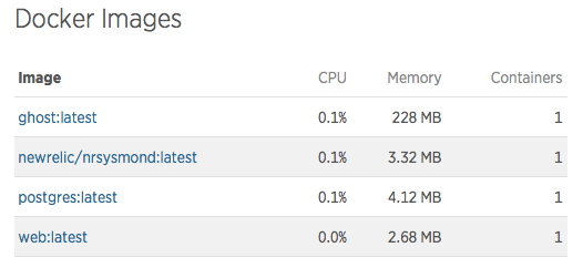 Docker image resource usage with New Relic nrsysmond